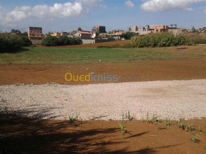 Terrain ouled ghalia - Vente terrain en indivision ...